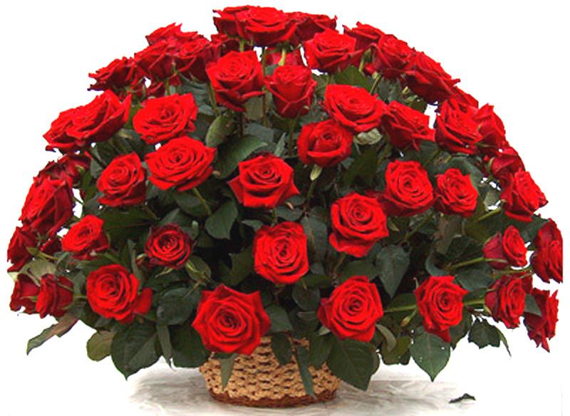Цветы для красивой девушки открытки